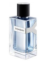 Yves Saint Laurent Y - EDT 100 ml